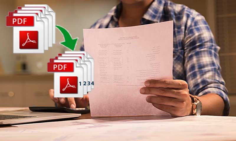Adding Page Numbers On Your PDF Has Been Made Easy and Fast With Gogopdf's Service