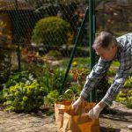 Protect the Garden from Animals