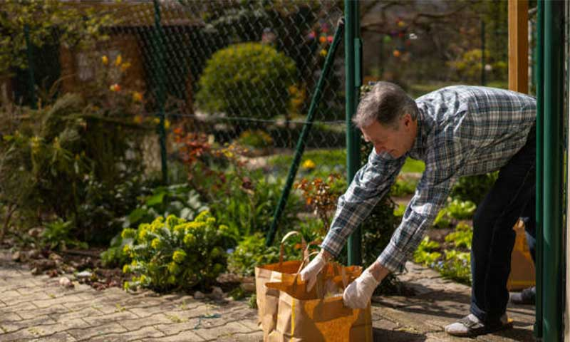 5 Ways to Protect Your Garden from Animals